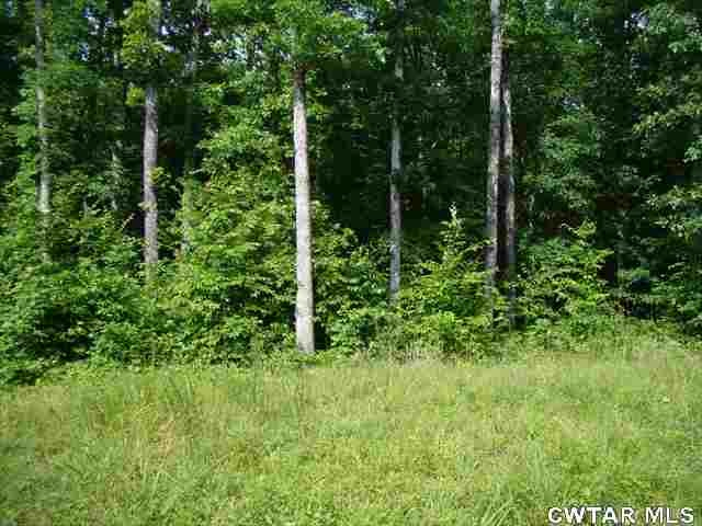 0 Brodies Landing, Parsons, TN 38363 Property Photo
