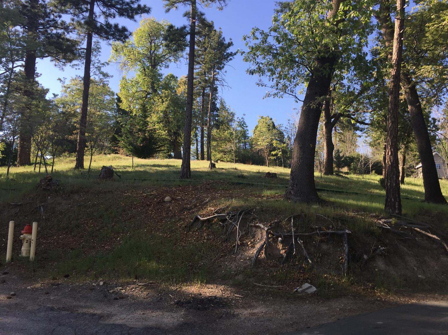 42 Park Drive, Running Springs, CA 92382 - Running Springs, CA real estate listing