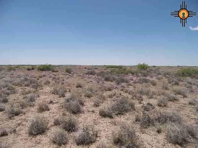NE of Columbus, Columbus, NM 88029 - Columbus, NM real estate listing