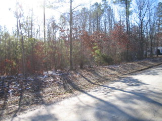 728 130 Moores Ordinary St, Kenbridge, VA 23944 Property Photo