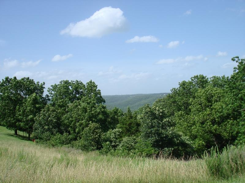 Tbd Whitetail Crossing Lots, Walnut Shade, MO 65771 - Walnut Shade, MO real estate listing