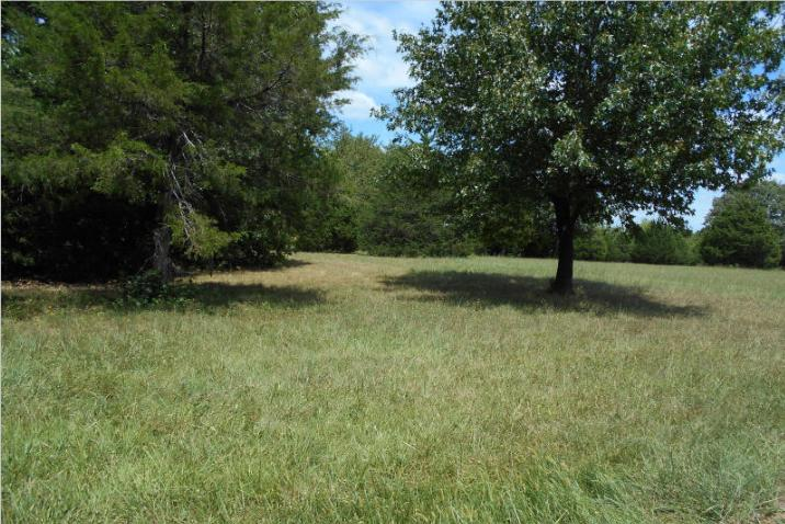Lot #18 Wyldewood Ridge, Fordland, MO 65652 - Fordland, MO real estate listing