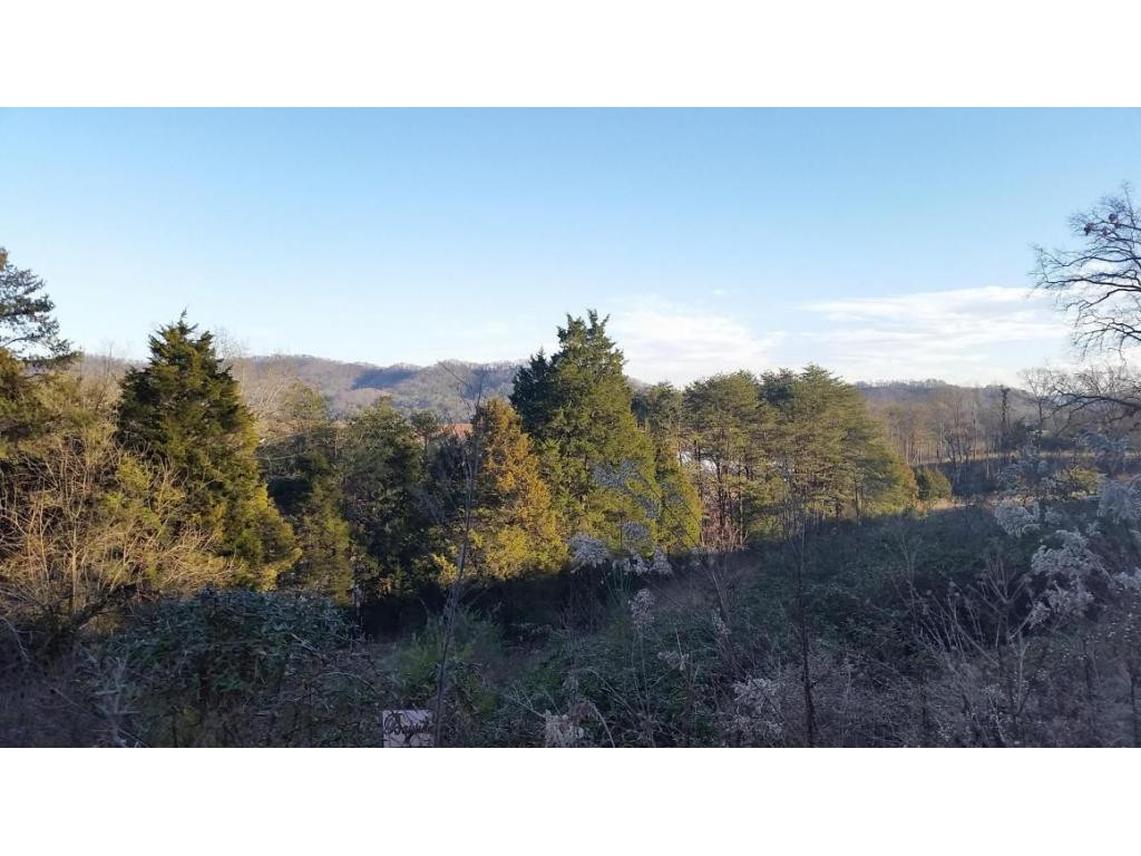Lot 60 Whispering Court, Bean Station, TN 37708 - Bean Station, TN real estate listing